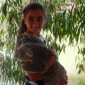 LG_koala